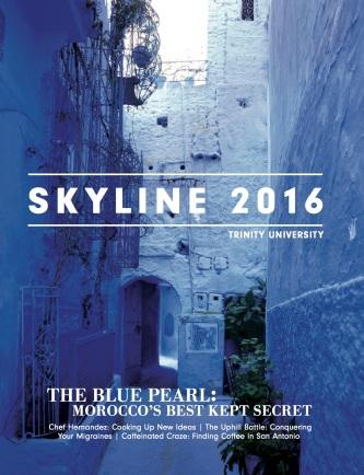 Skyline_cover